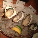 Photo of Oyster Bar&Restaurant Ostrea