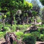 Die ganze Bandbreite der in Marokko möglichen Pflanzen