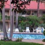 Swimming Pool, Best Western Plus Pepper Tree Inn, Santa Barbara, CA