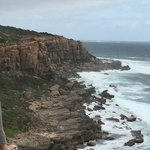 Scene from Cape to Cape Track