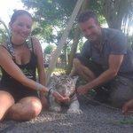 15 minutes tiger cub encounter