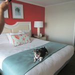 Jack is thrilled with our room