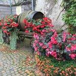 Musee du Vignoble Et des Vins d'Alsace