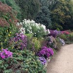 the 200ft border in its Autumn colours