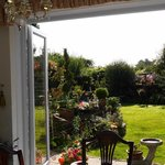lbeautiful garden and a lovely sunny morning
