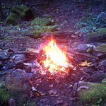 Fire ring by the Creekside picnic area.