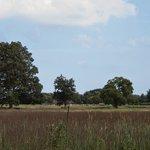 Dorbrook Park Recreation Area