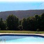 The saline (chlorine-free) pool
