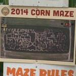 Don't get lost while in the corn maze!!!