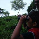 Nature Walk - Bird Watching