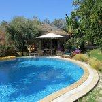 The lovely garden/pool area
