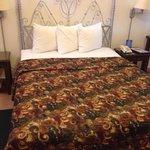 Foto de Hotel El Almendro Managua