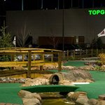 Go To Top Golf to let out some steam and have a drink