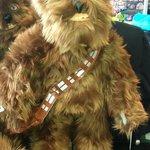 Chewbacca in Disney Store