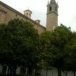Naranjos y Torre