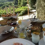 Breakfast outdoors with a vineyard view!