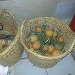 fresh oranges at The Riyad
