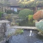 Ponds inside the hotel grounds.