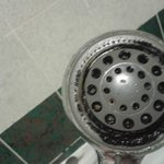 Black mouldy shower head
