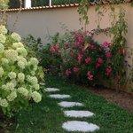 Arrière du jardin