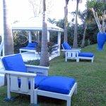 Gardens Featuring Private Decking Arrangements