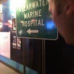 clearwater marine hospital