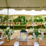 Reception Canopies