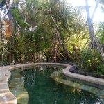 Den ene hot pool