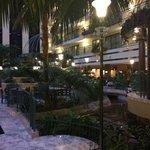 Inside hotel gardens