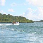 speed boat heading to mangrove atolls