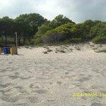 Playa El Torn Naturist Beach Foto