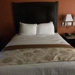 Queen bed room 235