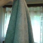 bath towels that look like floor washing cloth