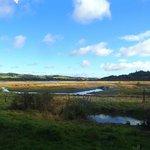 RSPB Lochwinnoch Nature Reserve