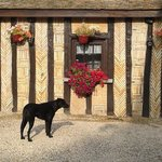 Photo de Moulin de Flagy