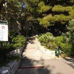 Steps to apartment blocks