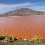 laguna Colorada Reserva Avaroa