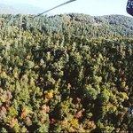 Fall Zip Tour Attitash Mountain...So much Fun!!