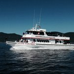 Port Angeles Whale Watch Company - Island Adventures