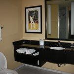 modern bathroom with walk in shower-no tub