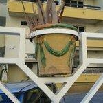 vertrocknte Aloe Vera (ungepflegte Anlage)