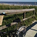 Biking on Isle of Palms Beach at Palms Oceanfront Hotel