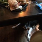 Milano Salami sandwich with Tiger under the table