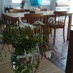 Mis kokulu masa çiçekleri...
