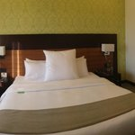 room 504