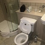 Shower room, Black Swan Inn