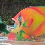 Kid's Fish Slide