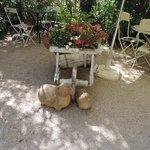 déco dans le jardin entre les tables