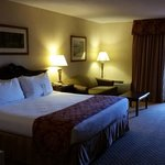 Spacious Suite. Very comfortable Bed/Pillows.