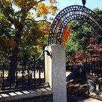 Fall visit